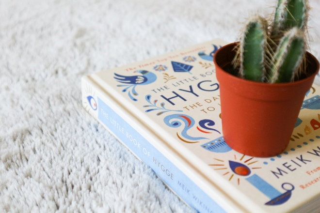 Hygge Cactus.jpg